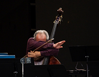 Festival les Vacances de Mr Haydn 2014