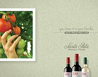 Wine Campaign