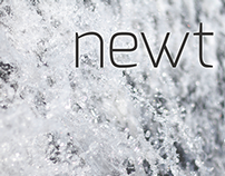 newt Brand Identity