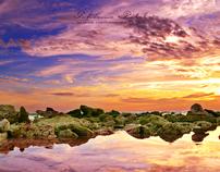 Waterscapes | Barbados
