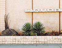 Some Photos - Issue 26: Some Liquor Stores