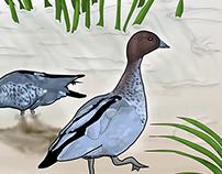 Water Bird Posters