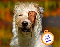 JR'S Pups-N-Stuff Website Redesign