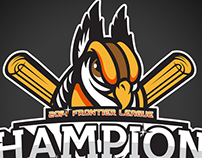 2014 FL Champions - Schaumburg Boomers
