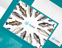 Ay Pesca - Fish Shop - Branding