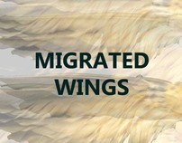Migrated Wings