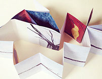 NOM DE PLUME | accordion book (self published)