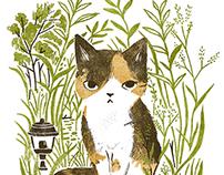 cats in garden