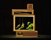 Plant-in City - 21st Century Terrarium
