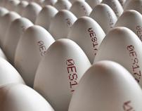 Code Egg by Rubén Álvarez