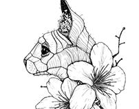 Sphynx cat & Sakura blossoms