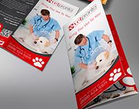 Trifold Brochure design for VetPronto