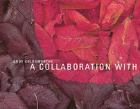 Andy Goldsworty :: book.design