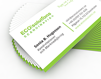 BUSINESS CARDS - ECOSOLUTIONS