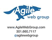 IDENTITY: Agile Web Group