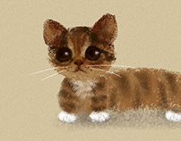 Cat's growth trajectory喵星人的成长轨迹