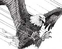 Drop pen Bald Eagle illustration