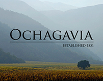 Ochagavía - Where everything began