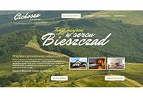 CICHOSZA Brand Identity & Website