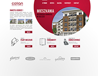 COLIAN DEVELOPER Website Concept