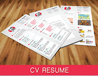 Resume Cv 3 In One