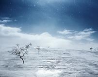 Arctic desert III