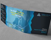 Modern Square TriFold Brochure