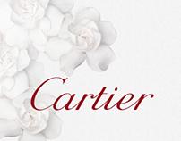 Cartier on Yahoo Maktoob