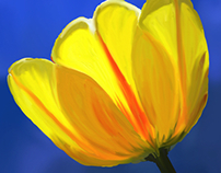 202 Tulip