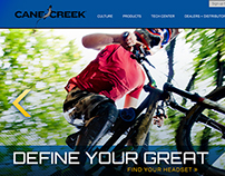 DIY Project #1 – Cane Creek Website Redesign