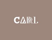 CARL cities • 1concept 4pics