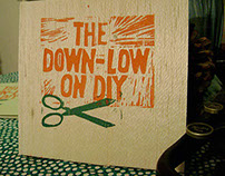 Down-Low on DIY Book