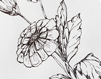 Flowers. Ink drawing