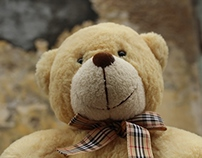 Teddy's Day Out - Photography