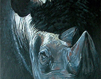 Rhino, Fading Into Black, chalk pastel on board
