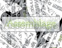 Type Compendium: Assemblage