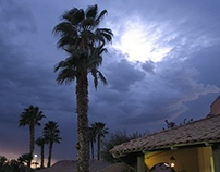I See the Light! - California