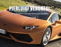 Pierluigi Veronesi - Driver