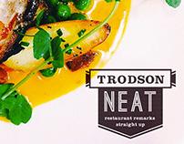 Trodson Neat // Identity + Website