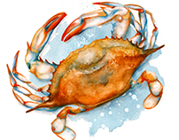 Watercolour Food Illustration - Soft Shell Crab