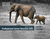 BIGDATA AND HADOOP TRAINING FOR YOUR CAREER
