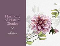 Harmony of Nature Shades. Plant illustration set