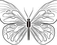 電腦繪圖-翅膀