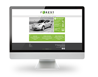 Forest Taxis Branding