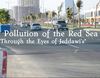The Pollution of the Red Sea