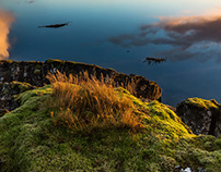 Discover Wild Iceland 83