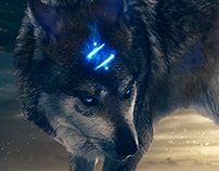 The return of the legendary wolf