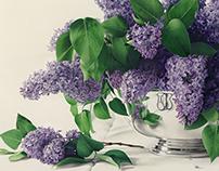 Botanical Images used by Caspari