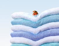 Lenor Ladybird