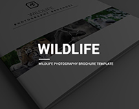 Minimal Wildlife Photography Brochure